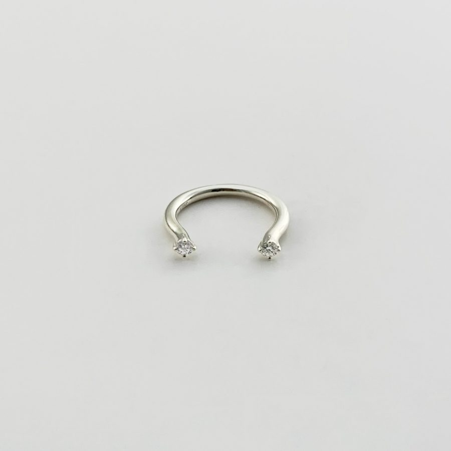 WD ring