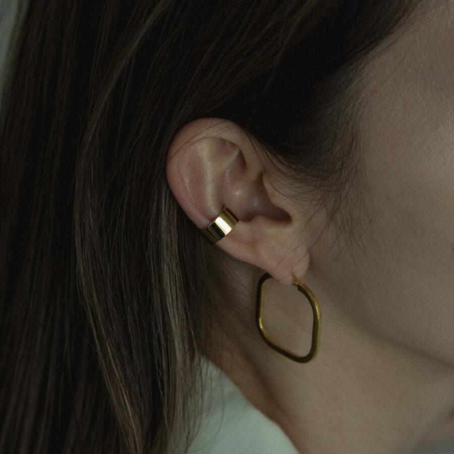WDE ear 01